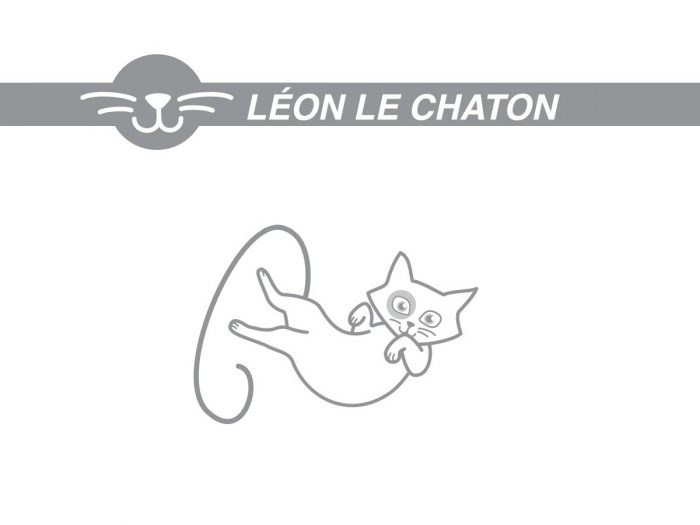 Leon-1600-900px11-11